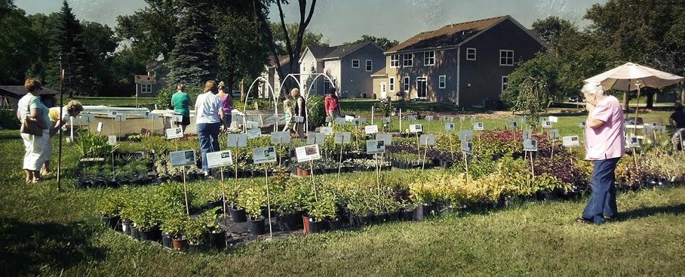 glen-ellyn-plant-nursery-visitors